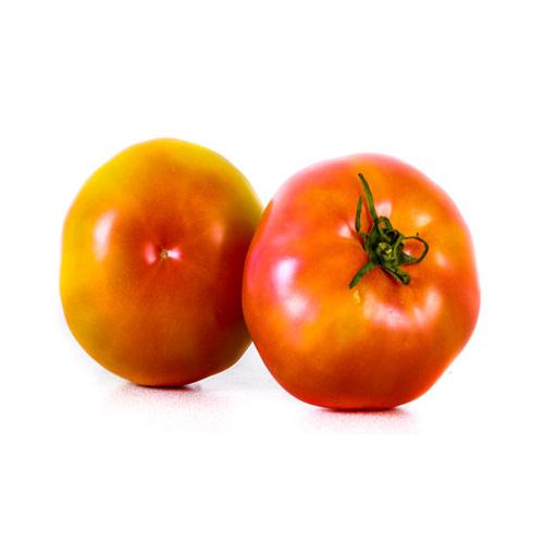 Tomate Bola